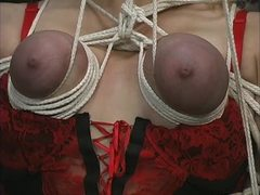 Sex, Group, Basement, Nylon, Blonde, 3 some, Lingerie, Teen, Bdsm, Tits, Brunette, Big tits