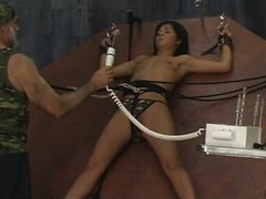Adorable slaves receive the rods in their asses