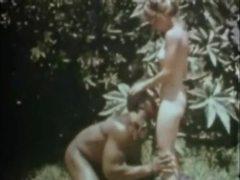 Esclavo, Antiguo, Antiguo, Clásica, Interracial, Peluda, Retro, Película pornográfica, Bdsm
